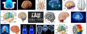 Qual'è la tua lingua madre? lo rivela il cervello