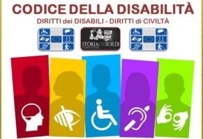 Codice della disabilità