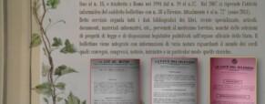 ANNO XXIII – DAL1° APRILE AL 30 SETTEMBRE 2010 – N.2 (69) ANNO 23