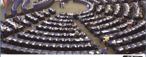Parlamento europeo delle persone con disabilità. Il 6 dicembre, focus sul voto